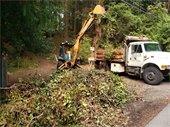 Truck and equipment removing vegetation