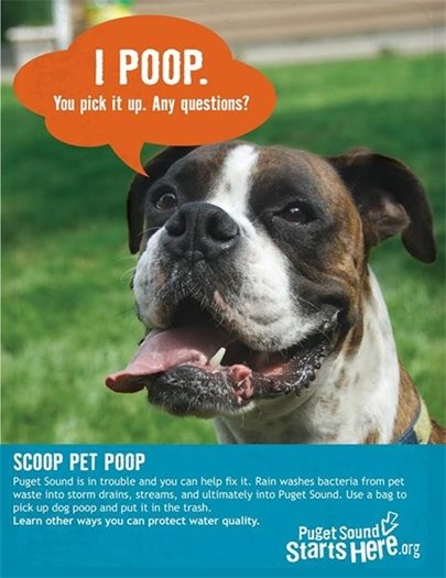 Dog with cartoon thought bubble: I poop. You pick it up. Any questions?