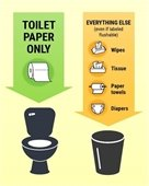 Only flush toilet paper