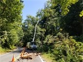 Roadway with fallen tree branches and truck clearing them