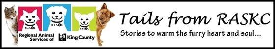 Tails from RASKC blog logo
